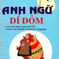 Anh ngữ dí dỏm, Anh Thư (Nụ cười ngôn ngữ Anh Việt)